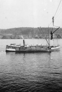 Unknown steam schooner gets loaded